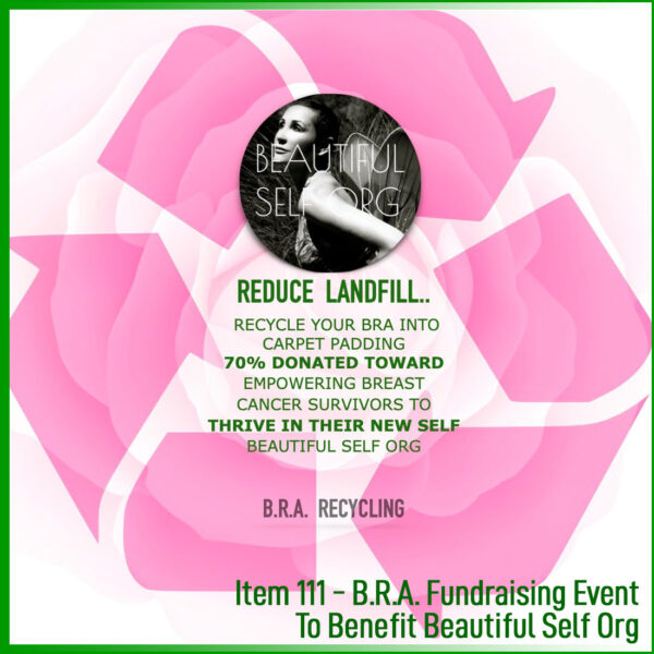 Fundraiser Beautiful Self Org